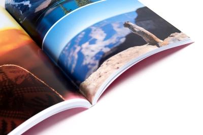 Almanakken afdrukken met haarscherpe foto's